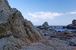 Rocks at the coastline. Stock Photos