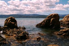 Rocks on Coastline. Rocky coastline in New Zealand stock photo