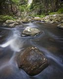 Rocks in countryside stream. Slow motion blur effect of stream flowing over rocks in countryside with forest in background Stock Photos
