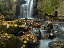 Rocks covered in autumn leave by a woodland stream Stock Photos