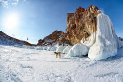 Rocks covered by ice on winter siberian Baikail lake. Stock Photo
