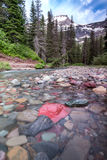 Rocks in Creek below Mount Grinnell Royalty Free Stock Images