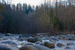Rocks, creek and forest. Stock Photos
