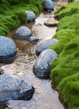 Rocks in a Creek Royalty Free Stock Image