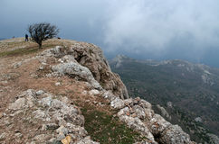 Rocks in Crimea (Ukraine) Royalty Free Stock Images