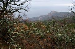 Rocks in Crimea (Ukraine) Royalty Free Stock Photography