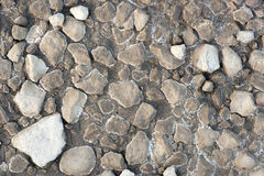 Rocks in dried clay Stock Images