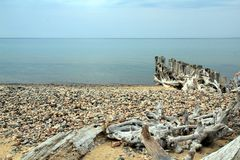 Rocks and driftwood on Lake Superior,Michigan Stock Photography