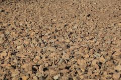 Rocks on a dry field Royalty Free Stock Photo