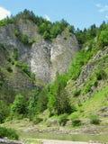 Rocks at Dunajec river Stock Images