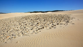 Rocks on Dune Royalty Free Stock Image
