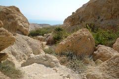 Rocks Ein Gedi. Israel Stock Images