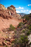 Rocks of Fire formation. Near canyon in New Mexico jpg Royalty Free Stock Photo