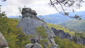 Rocks at flank of hill Stock Photography