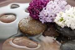 Rocks, flowers, and water Stock Photography
