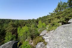 Rocks in Fontainebleau forest royalty free stock photos