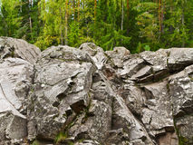 Rocks in the forest Stock Photography