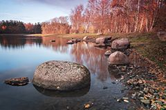 Rocks in forest pond royalty free stock image
