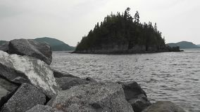 Rocks in the front, water with small waves and trees moving by the wind stock video footage