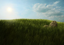 Rocks on grass Royalty Free Stock Image