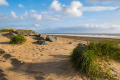 Rocks and grass on beach Stock Image