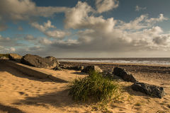 Rocks and grass on beach Royalty Free Stock Photography