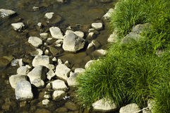 Rocks and grass on riverside Royalty Free Stock Photography