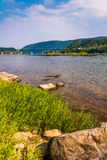 Rocks and grasses along the Potomac River, near Harper's Ferry, Royalty Free Stock Photography