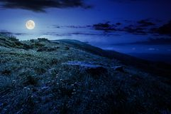 Rocks on grassy hillside of the mountain at night. In full moon light. yellow dandelions along the path uphill in to the sky with fluffy clouds. beautiful Stock Image