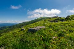 Rocks on grassy hillside of the mountain. Yellow dandelions along the path uphill in to the sky with fluffy clouds. beautiful summer scenery. tracking and Royalty Free Stock Images