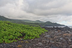 Rocks and green. Clouds over the Reunion island stock image