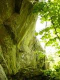 Rocks in Green Light Royalty Free Stock Image