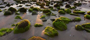 Rocks with green moss Royalty Free Stock Images