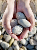 Rocks in hands. Hands holding four rocks over rocky background Stock Image