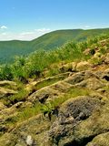 Rocks and high grass at the green mountains Stock Photo