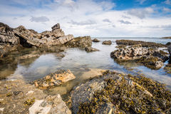 Rocks at Howick Stock Photo
