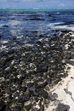 Rocks in ile du cerfs mauritius Royalty Free Stock Photo