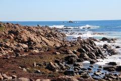 Rocks at Injidup Western Australia Stock Photography