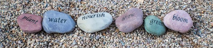 Rocks with inspirational words. Carved on them, plant water nourish grow green bloom royalty free stock photos