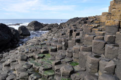 Rocks ireland giant's causeway Royalty Free Stock Photos