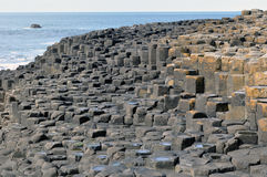 Rocks ireland giant's causeway Royalty Free Stock Image