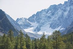 Kuiguk walley. Altai mountains landscape. Rocks in Kuiguk walley. Altai mountains landscape Royalty Free Stock Photos