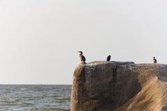 Rocks on lakeshore Royalty Free Stock Photos