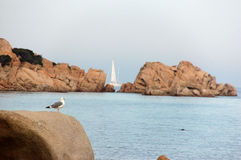 Rocks and landscape typical of Sardinia Royalty Free Stock Photo