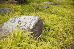 Rocks on the lawn. Royalty Free Stock Photography