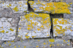 Rocks and lichen. Royalty Free Stock Images