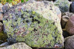 Rocks with lichens Royalty Free Stock Image