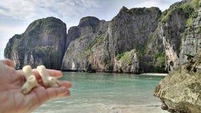 Maya Bay in Thailand royalty free stock images