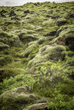 Rocks and Moss Royalty Free Stock Photography