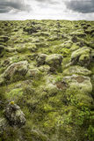 Rocks and Moss Royalty Free Stock Image